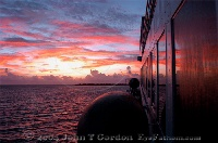 Sunrise on board Nekton