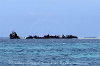 Tanker at Half Moon Caye