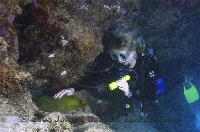 Alaina with Green Moray