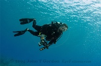 Diving Photographer 2
