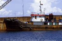 Tug Boat and Barge in Wori Bay